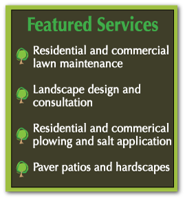 Williamson Landscaping Featured Services List